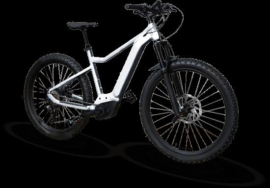 E-Mountainbike Verleihbike